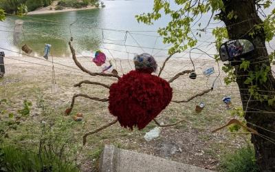 Araignée australienne au Grand Parc